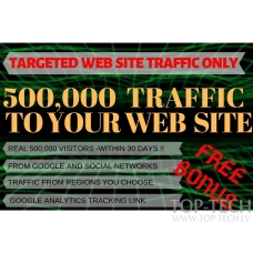 500,000 Traffic to WebSite